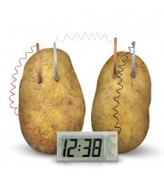 Картофельные часы 4M 00-03275
