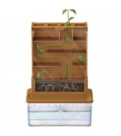 Умные растения 4M 00-03352