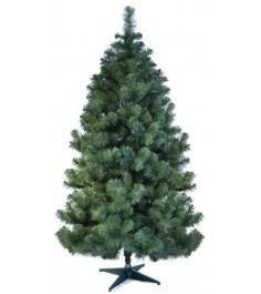 Ель царь елка Алтайская 150 см
