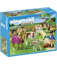 Playmobil серия конный клуб Загон для лошадей 5227pm