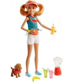Кукла Barbie Челси и щенок  FHP63