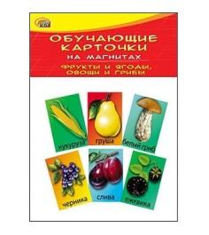 Обучающие карточки на магнитах фрукты и ягоды овощи и грибы Рыжий кот км-6077
