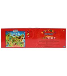 Звуковой плакат Рыжий кот животный мир россии ЗП-1560