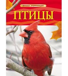 Детская энциклопедия птицы Росмэн 17328