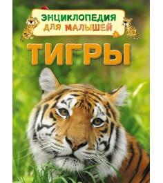 Энциклопедия для малышей тигры д маклейн Росмэн 30657