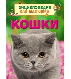 Книга энциклопедия для малышей кошки Росмэн 30658