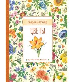 Цветы природа в деталях Росмэн 31640